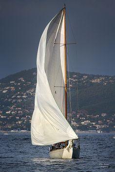 Sail Away, Nautical And Maritime - People-Places-Things Photo Facebook, Yacht Boat, Sail Away, Set Sail, Wooden Boats, Tall Ships, Water Crafts, Catamaran, Sailing Ships