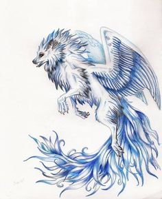 pictures of winged animals wolves and cats | rysunek | fantasy | skrzydła | wilk