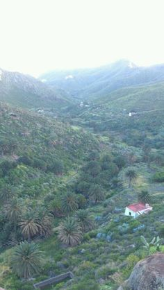 Zona de #Anaga, isla de #Tenerife - #IslasCanarias