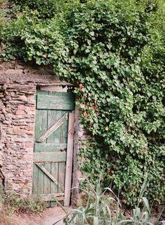 Ligurian Vineyard Secret Door | photography by Arielle Doneson Photography http://www.ariellephoto.com/