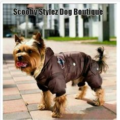 Scooby Stylez Dog Boutique Follow and Shop @scoobystylez1
