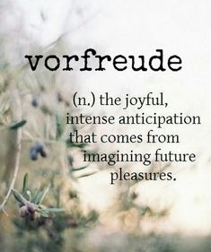 Vorfreude-