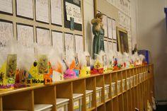 Celebrating the Saints for our K students Catholic School, Art Programs, St Michael, Saints, Blessed, Students