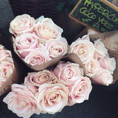 Andy!!!! My favorite flowers are white roses, light pink roses or antique looking roses. REMEMBER THIS!