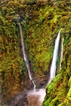 thoseghar waterfall #thoseghar #waterfall #satara #pune #indiantravel #india #travel Small Places, Heaven On Earth, India Travel, Pune, Life Hacks, Waterfall, Places To Visit, Outdoor, Outdoors