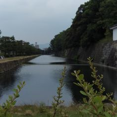 moat around the castle Visit the post for more.  on my daily life and tagged architecture, historical, japan, kyoto, landscape, matchaatnoon, moat, nature, Nijo Castle, Nijo Jo Castel, on my daily life, travel