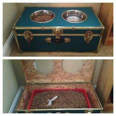 Cute recycled trunk turned dog food storage/raised feeder!