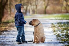 """Cesar Millan Reveals #1 Reason Dogs Bite Children  -  """"We are teaching our children the wrong way to relate to mother nature.""""  Provided by Mom.me"""