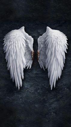 Angel Wings Wallpapers Free By Zedge