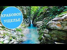 Water, Outdoor Decor, Youtube, Gripe Water, Youtubers, Aqua, Youtube Movies