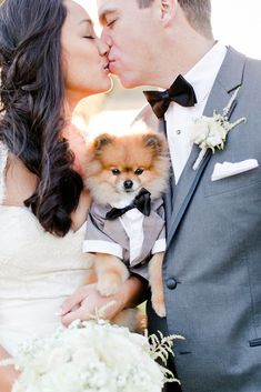 Gorgeous Photo Ideas Of Wedding Pets For Your Album ❤ See more: http://www.weddingforward.com/wedding-pets/ #weddingforward #bride #bridal #wedding