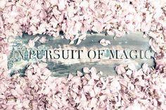 In Pursuit Of Magic: Raising Consciousness Through Street Art