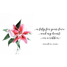 """Lily"" by Araceli M. Poetry, March, Love You, Lily, Journey, Je T'aime, Te Amo, Lilies, I Love You"