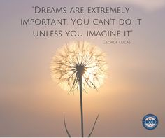 Dreams are extremely important. You can't do it unless you imagine it.