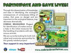 Through the dissemination of knowledge and ease in identifying, the ecological consequences of unnecessary killing of snakes, that pose no danger and are important to the ecological balance, may decrease dramatically. COBRAS BRASILEIRAS Project for identification of snakes and as a help in the initial measures for the handling of accidents with venomous animals. We are currently looking for both individual and corporate sponsorship for this greatly needed project!