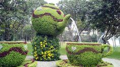 Teapot and teacups fountain in Lima, Peru Alice In Wonderland Garden, Antique Tea Sets, My Cup Of Tea, Topiary, Hedges, Creative Inspiration, Cactus Plants, Tea Time, Garden Sculpture