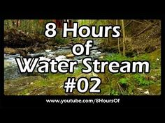 Water stream video and sound for relaxation and sleep, 8 hours of sleep video.  Please like, subscribe and comment if you enjoyed this video. It will really help me out a lot. :)  http://www.youtube.com/subscription_center?add_user=8hoursof