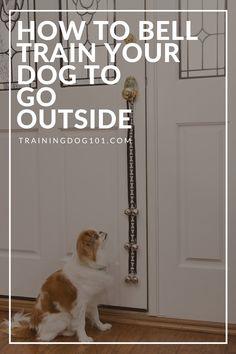 Puppy Potty Training Tips, Dog Training Bells, Training Your Dog, House Training A Puppy, House Breaking A Puppy, Puppy Schedule, Dog Enrichment, Dog Potty, Dog Care