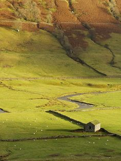 field barn in North Yorkshire, England, with lovely light