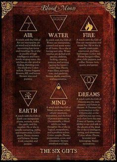 Which Witch are You??