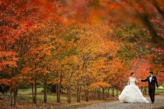 This is gorgeous...how beautiful woul this be on a wall in your house?? #maryland #wedding #photography