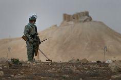 Т.И.Е. Фото из интернета.  Пальмира. Русский сапер. Разминирование местности.