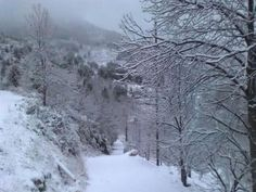 Camino Nevado West Virginia, Snow, Outdoors, Naturaleza, Drive Way, Outdoor Rooms, Off Grid, Outdoor, Eyes