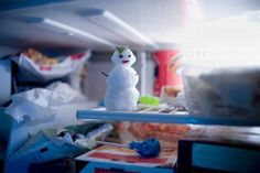 Freeze your costs (literally!)    #Tips on how to manage what goes in your freezer, organize and #savemoney!