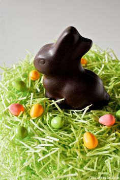 Chocolate Easter Bunny Cake - how to decorate this easy cake for Easter dessert, using edible grass, a chocolate Easter bunny and candy eggs. Easter Cake Easy, Easter Bunny Cake, Chocolate Easter Bunny, Easter Candy, Easter Treats, Edible Grass, Easter Deserts, Weird Food, Crazy Food