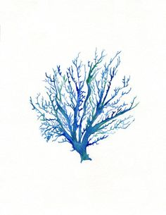 No.4 Sea Coral / watercolor print / dark blue /  teal / light blue / aqua / sea / ocean life /. $20.00, via Etsy.