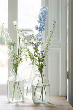 Flowers and shutters 💙 Happy Flowers, Fresh Flowers, Beautiful Flowers, Delphinium, Home And Deco, Decoration Table, Flower Vases, Planting Flowers, Floral Arrangements