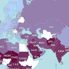 International Day of the Girl: Map shows the U.N. Development Program's gender inequality index. - Slate Magazine