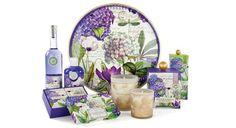 Hydrangea Collection