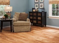 Dream Home - Nirvana PLUS - 10mm+pad Madison River Elm Laminate
