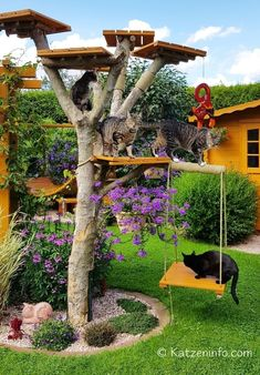 Outside Playground, Cat Playground, Outdoor Cat Tree, Cat Castle, Cat Fence, Cat Tree House, Outdoor Cat Enclosure, Diy Cat Tree, Cat Run