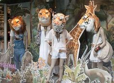 Animal window display