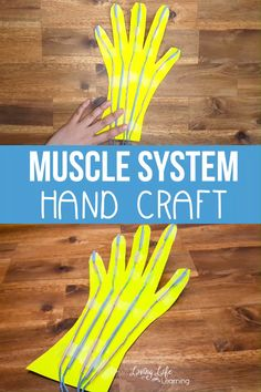 Make science come alive by seeing how the hand works as it moves They will absolutely love making this Muscular System hand craft for kids See how the muscles move the entire hand when you learn about the muscle system in your body It s amazing Human Body Lesson, Human Body Science, Human Body Activities, Human Body Unit, Human Body Systems, Physical Science, Science Crafts For Kids, Hand Crafts For Kids, Science Experiments Kids