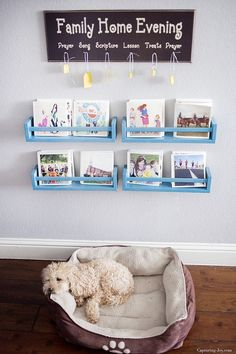 DIY Bok Shelves with