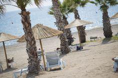 SENTIDO Flora Garden Beach      (4)