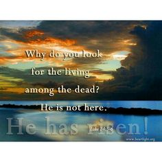 Amen! Thank you Lord!