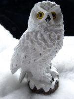 Sneeuwuil op stam B