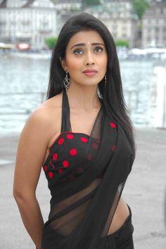 awesome Actress Shriya Saran Hot Saree Collection Latest