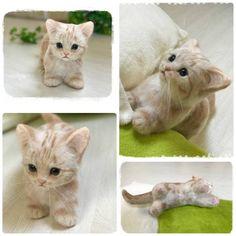 +meiya+ ハンドメイド 羊毛フェルト マンチカンのかわいい子猫・゜・。*リアルサイズ☆_画像2