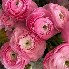 Rose Like Flowers, Flowers For Sale, Burgundy Flowers, Pretty Flowers, Colorful Flowers, White Flowers, Ranunculus Wedding Bouquet, Ranunculus Flowers, Wedding Flowers