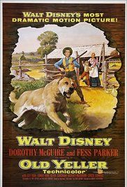 Watch Movie Old Yeller. A teenage boy grows to love a stray yellow dog while helping his mother and younger brother run their Texas homestead while their father is away on a cattle drive. First thought to be good-for-nothing mutt, Old Yeller is soon beloved by all.