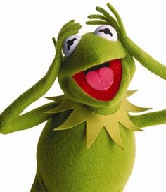 Conversation with Kermit the Frog