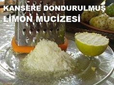 Dondurulmuş Limon Mucizesi – Hatunzade.Com