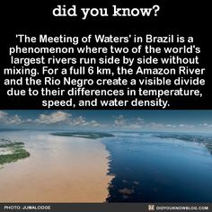 er, 'nature' of a 'thing' then absolutely imissible or subjectively distinct (accident of visible sense) ? Beautiful Places To Travel, Cool Places To Visit, The More You Know, Did You Know, Wtf Fun Facts, Random Facts, Epic Facts, Funny Facts, Funny Jokes