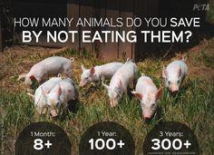 How does going #vegan help animals? The numbers speak for themselves.  #FriendsNotFood  @peta @PETAUK @PetaIndia