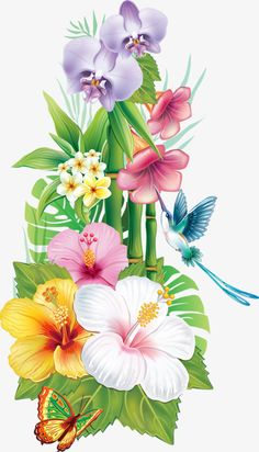 assorted Color Flowers Flower Tropics Drawing Exotic in hawaiian flower drawing Assorted color flowers Flower Tropics Drawing exotic Hawaiian Flower Drawing, Hawaiian Flowers, Flower Art, Exotic Flowers, Tropical Flowers, Beautiful Flowers, Tropical Flower Tattoos, Hummingbird Flowers, Drawing Clipart